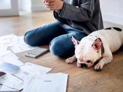 Woman with dog managing finance papers