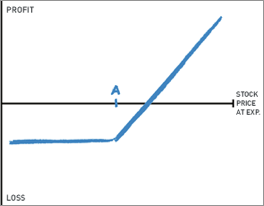 Protective put graph
